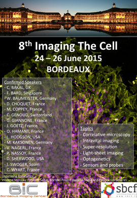 Imaging The Cell 2015